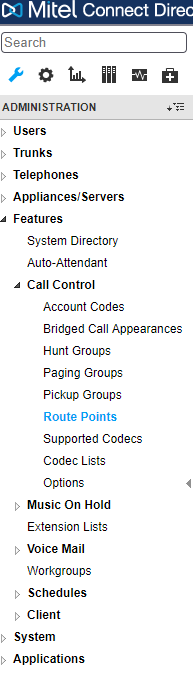 Route point in Mitel Director